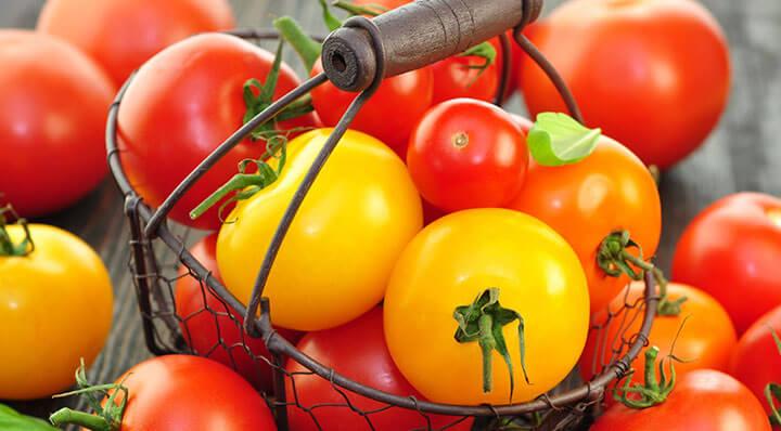 Tomates cocktail sous videCocktailtomaten Rezept Miessmer Fotolia 43616876
