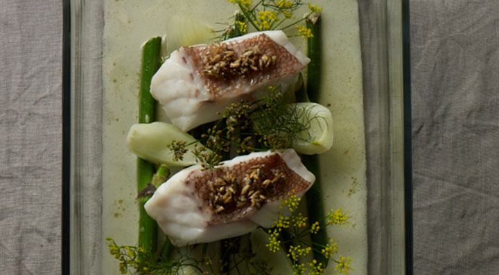 Rose fish with sous vide fennelRotbarsch Fenchel Janphilippberner