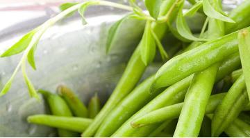 Bush beans sous videBuschbohnen Miessmer Fotolia 24530864