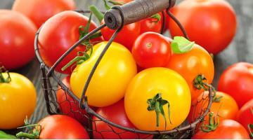 Cocktail tomatoes sous videCocktailtomaten Rezept Miessmer Fotolia 43616876
