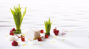 Codfish sous vide with red beetKabeljau Rotebete Wheatgrass Heikoantoniewicz
