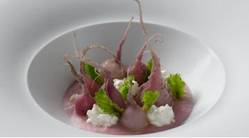 Sous vide radishes with fresh cheeseRadieschen Frischkaese Janphilippberner
