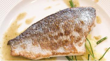 Pike-perch sous vide with lemon butterZander Verbeneoel Frankbuchholz Fotolia 30865040